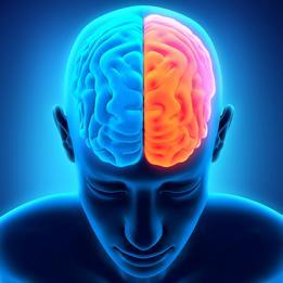 Синхронизация полушарий мозга и ходьба