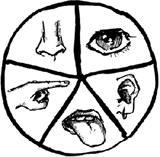Метод Пять креативных чувств
